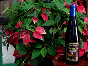 Licor de Vinho Português