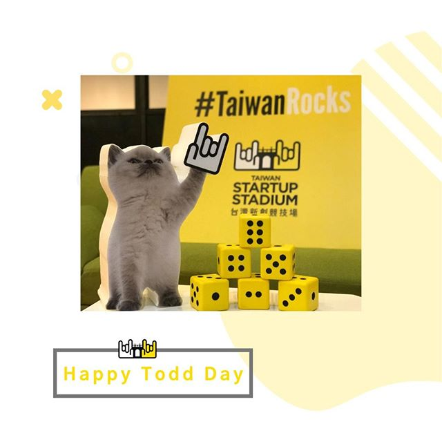 🎉Shout out to all the Cat Lovers out there! In case you don't know, Todd is our mascot here at TSS. Today is International Cat Day! Thanks Todd for accompanying us to all the cool summits and exhibitions. We're looking forward to taking you to more places! ❤️