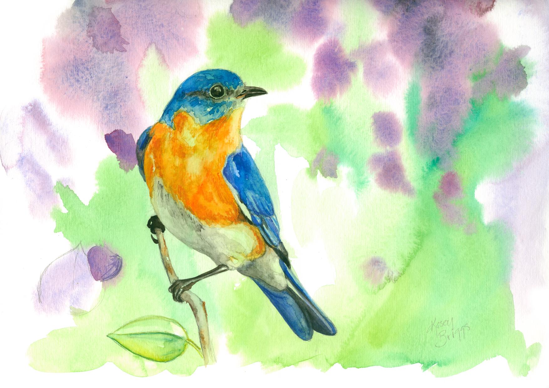 Bluebird-on-Branch-web.jpg