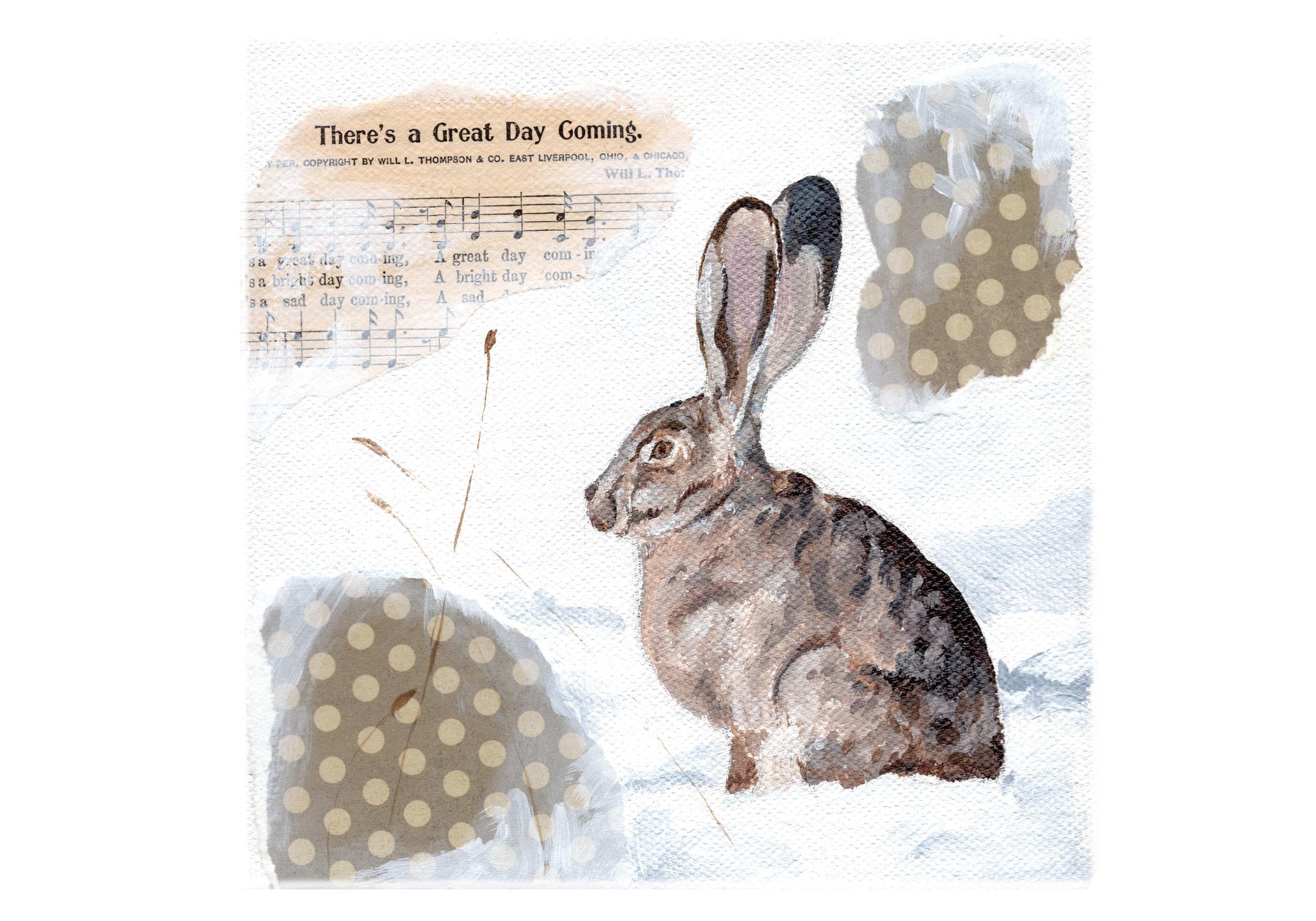 Rabbit-web.jpg