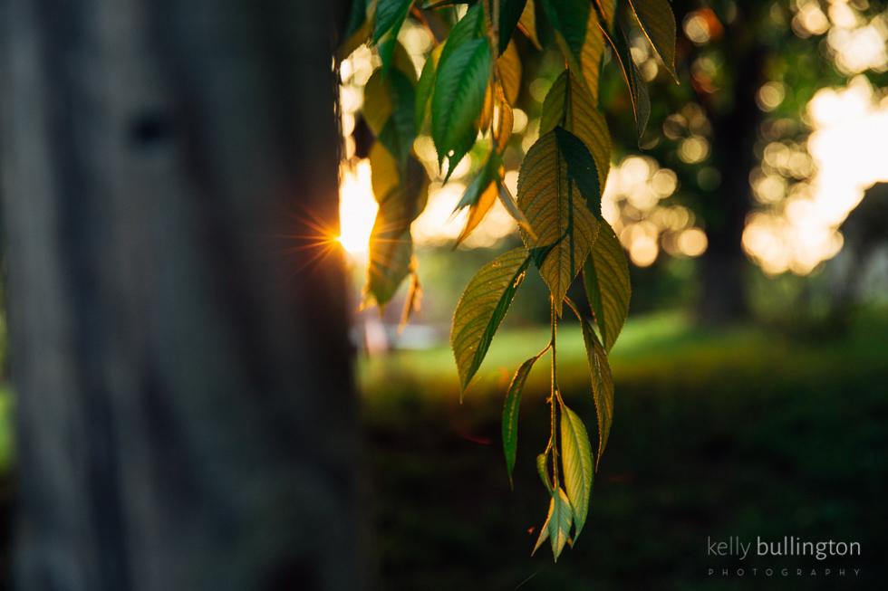 KellyBullington_-4104.jpg