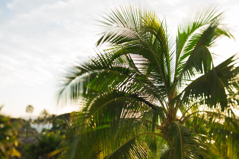 Kelly Bullington Photography- Hawaii-12.jpg