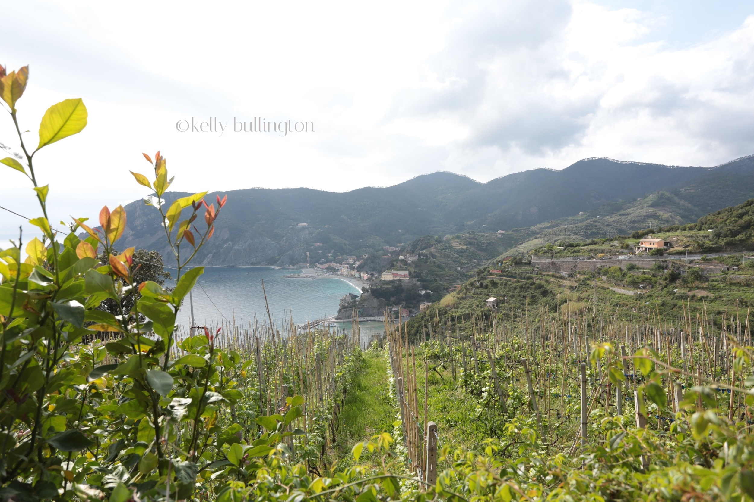 cinque-terre-kelly-bullington-photography