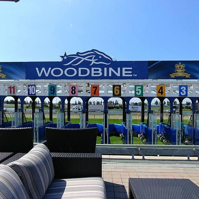 Episode 2 @talkin_horse_racing NOW AVAILABLE on www.talkinghorseracing.com This epsiode you'll meet the #QP17 contenders, learn how to bet on the big race, plus so much more!! #horseracing #thoroughbred #horse #queensplate #woodbine #horses #webseries #to #toronto #ontario #canada #canada150 #canadaday #happybirthday