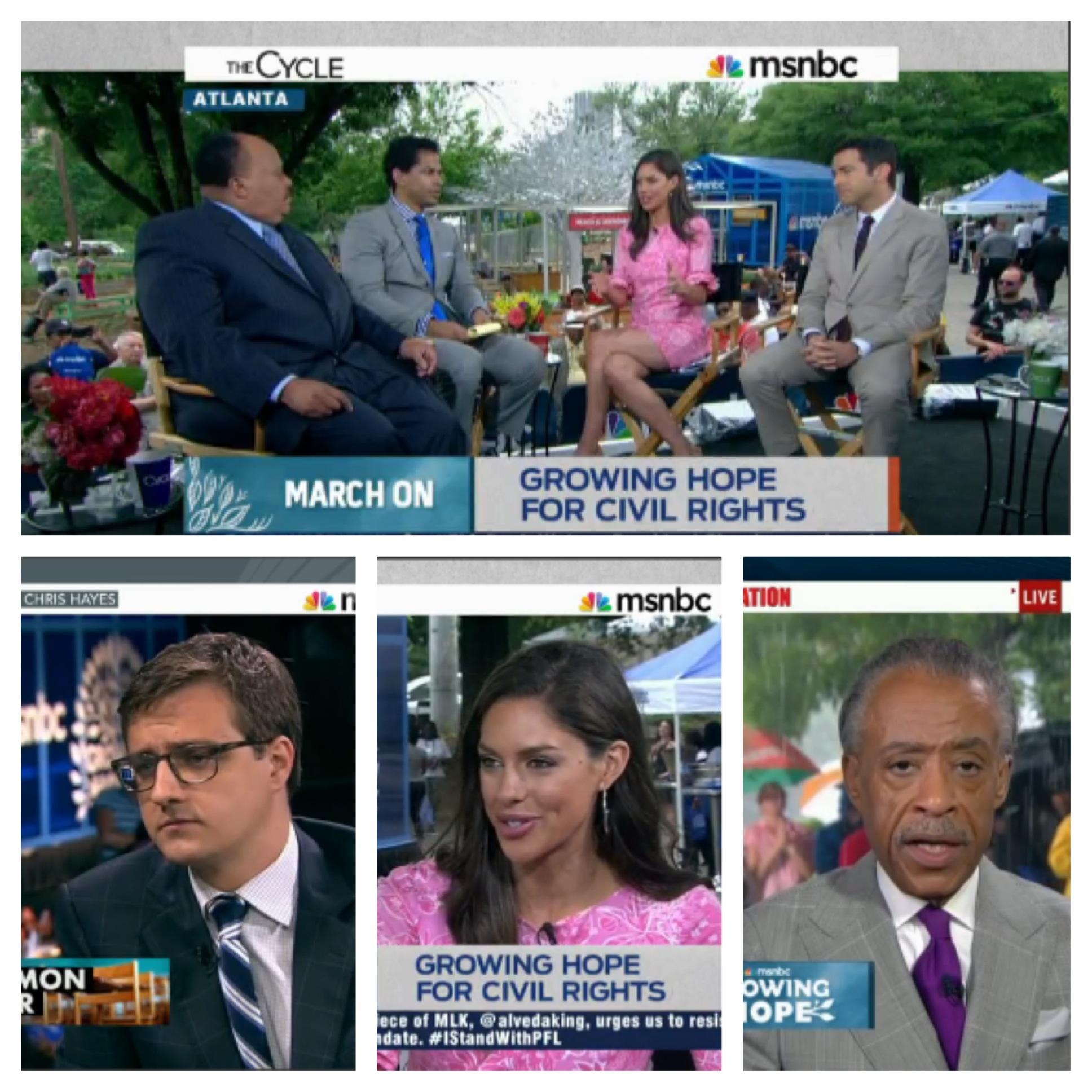 MSNBC collage.jpg