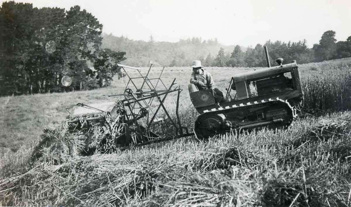 Harvesting-1938-CRO-18.jpg