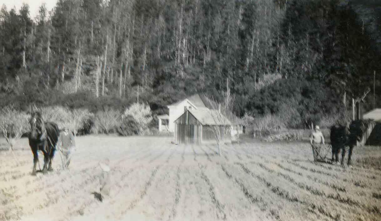 Chalk-Ridge-1931-CRO-29.jpg