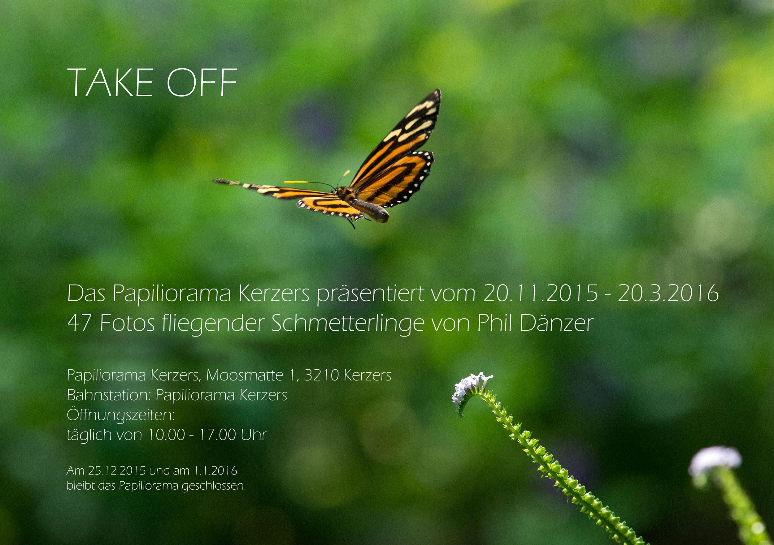 Ausstellung von phil dänzer im papiliorama Kerners
