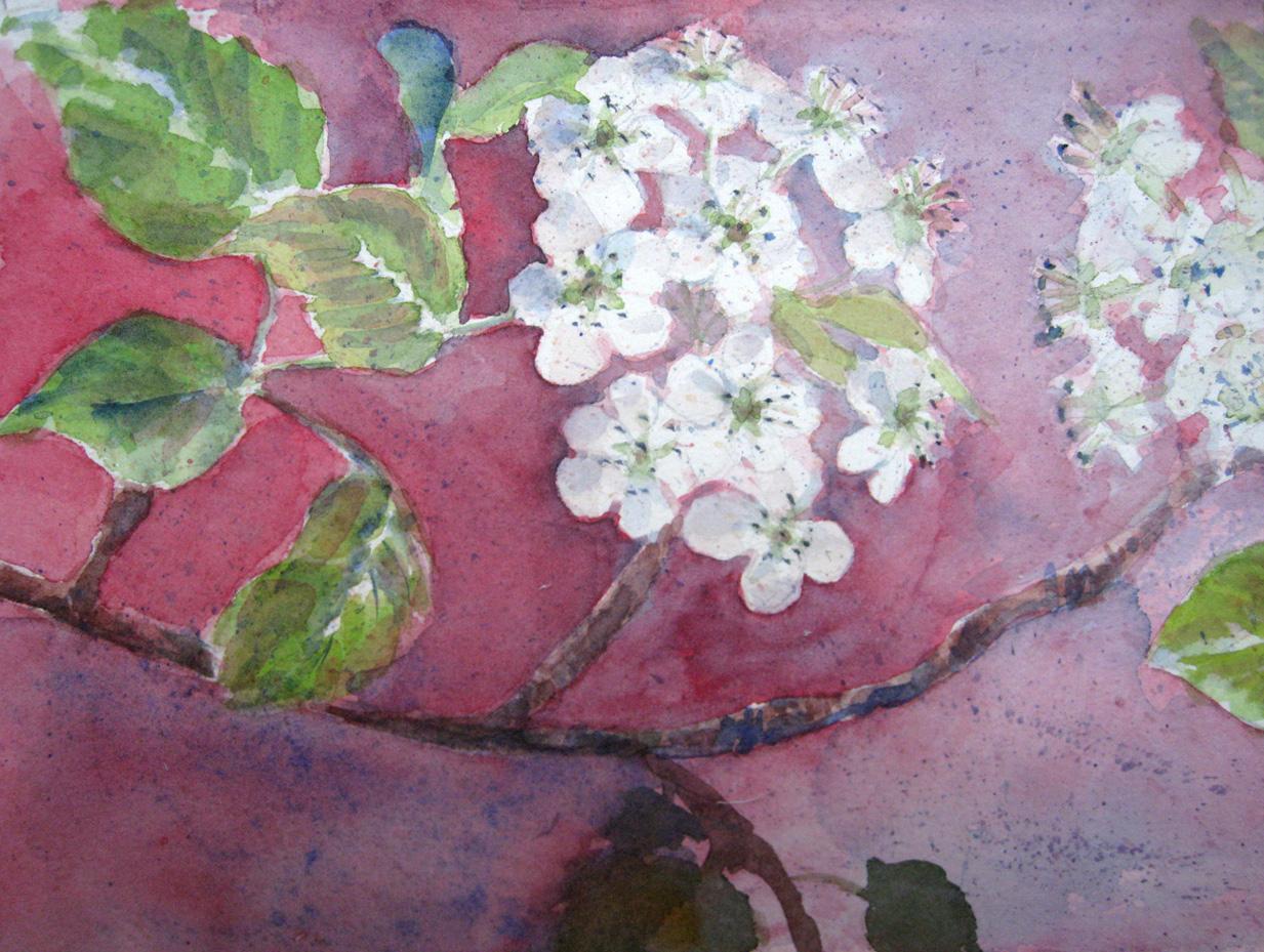 Apple Blossom nr. 1
