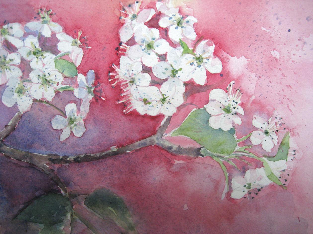 Apple Blossom nr. 2