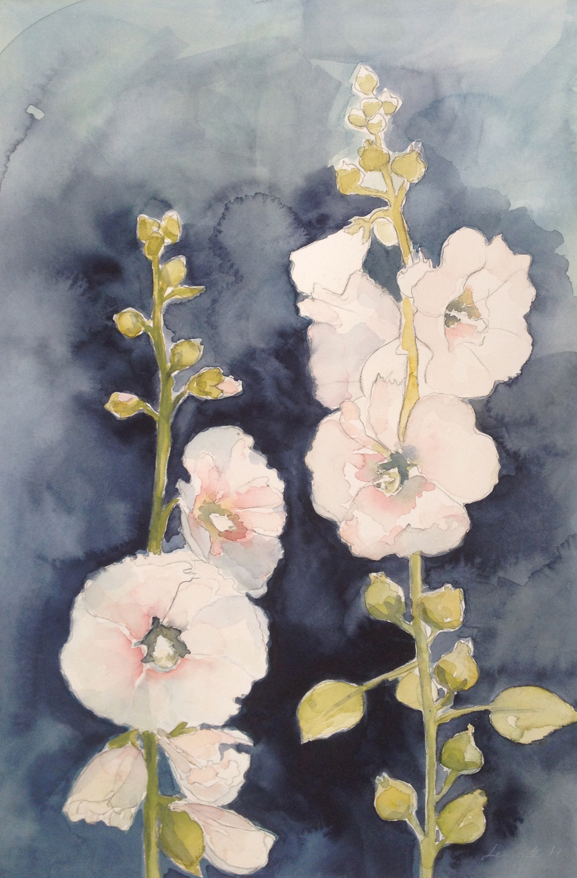 Hollyhocks nr. 1