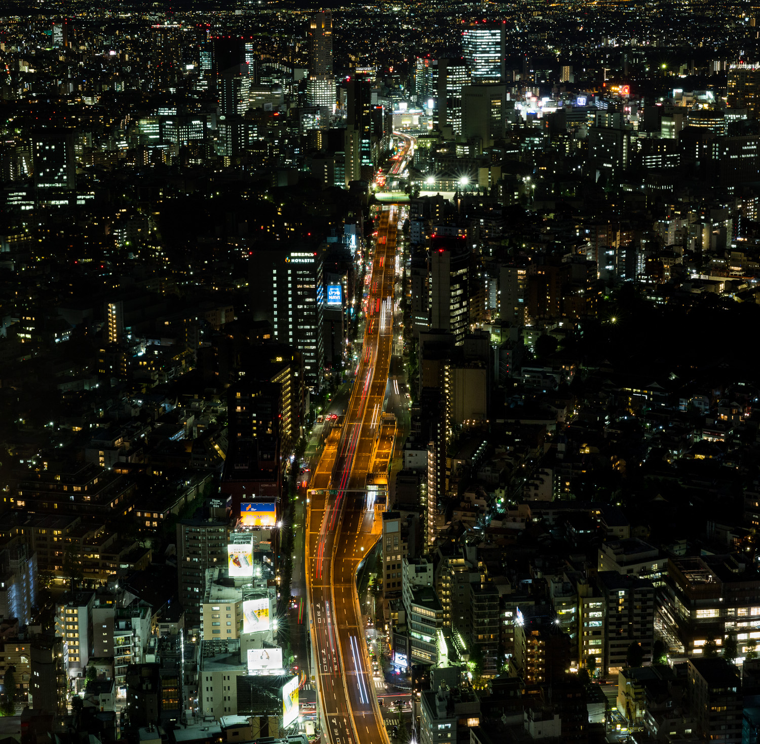 View fron the Mori Tower in Tokyo