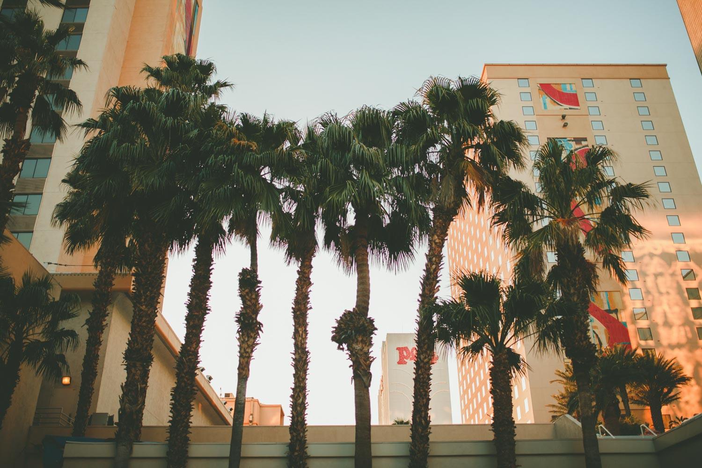 Photographe Mariage Destination Las Vegas Vintage-378.JPG