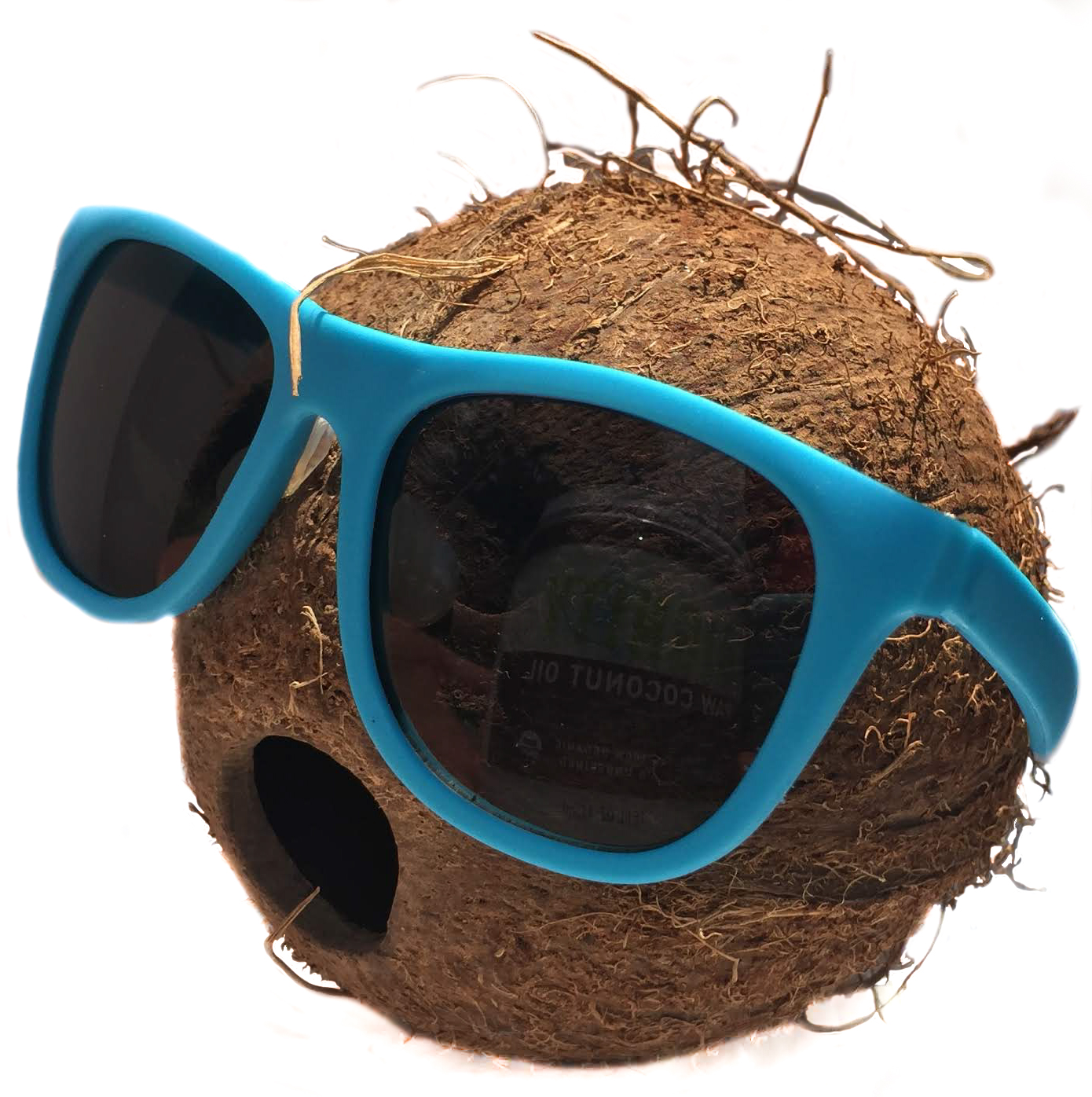 Dignity_Coconut_with_Sunglasses.jpg