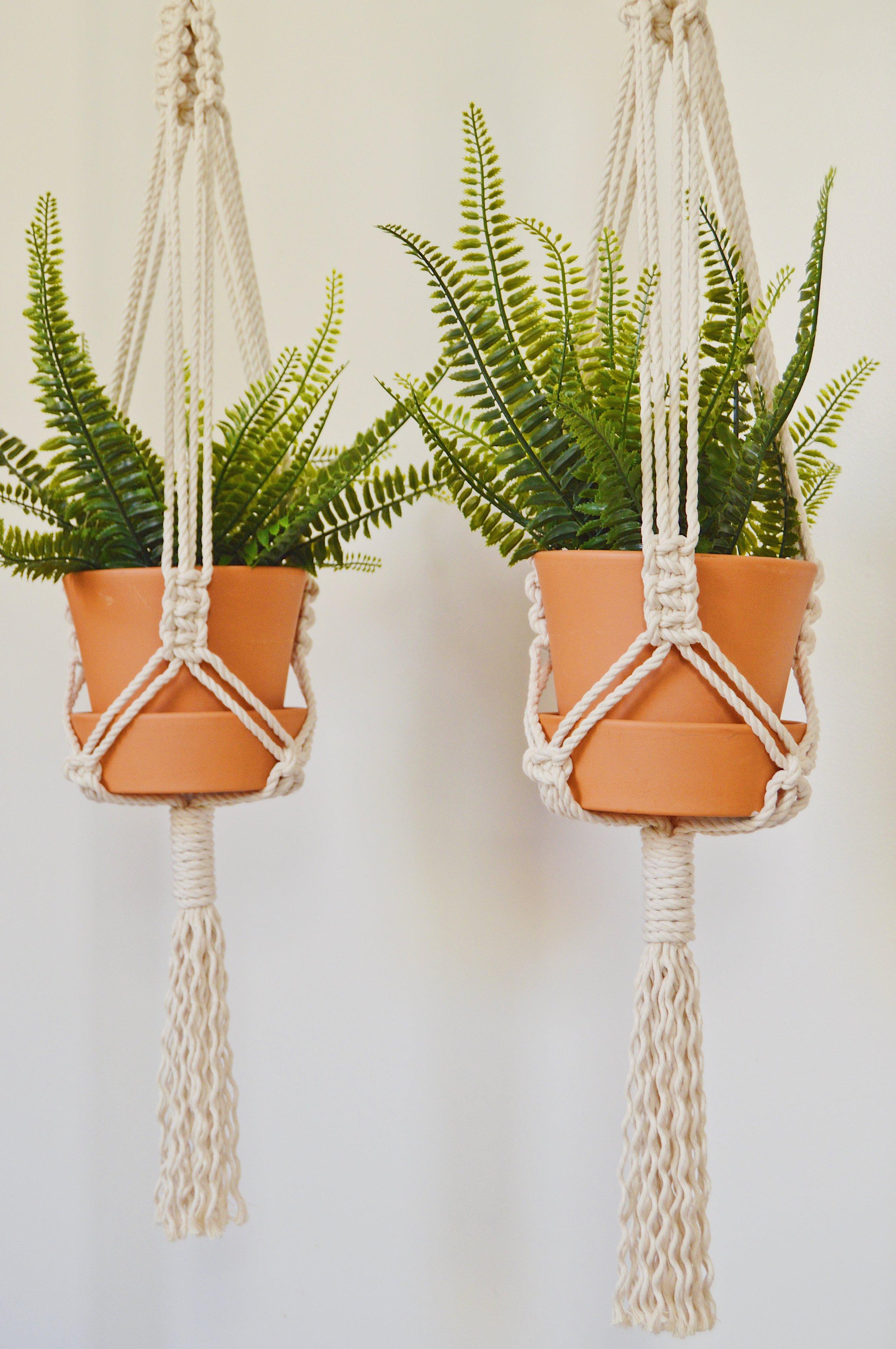 Planthanger3.jpg