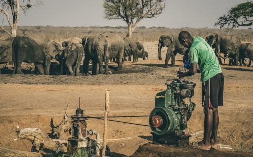 Water pumped from underground sources has long sustained Hwange's elephants.