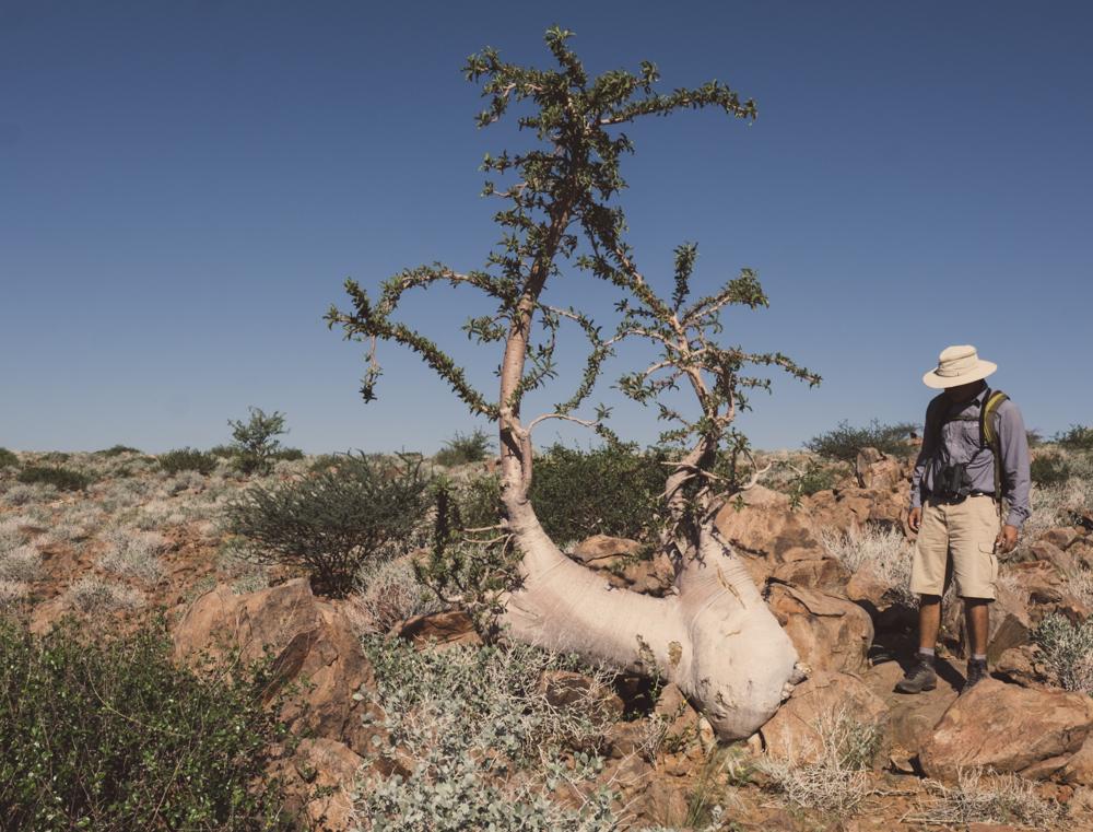 MSissons-Namibia2018 (59 of 60).jpg