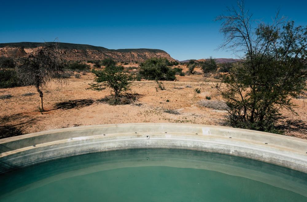 MSissons-Namibia2018 (7 of 60).jpg
