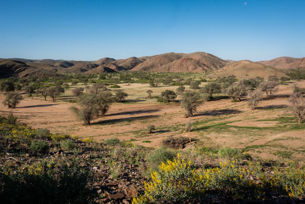 MSissons-Namibia2018 (52 of 60).jpg