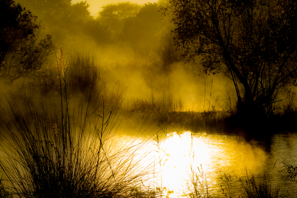 MarkSissons-WaterforHwange2019-61.jpg
