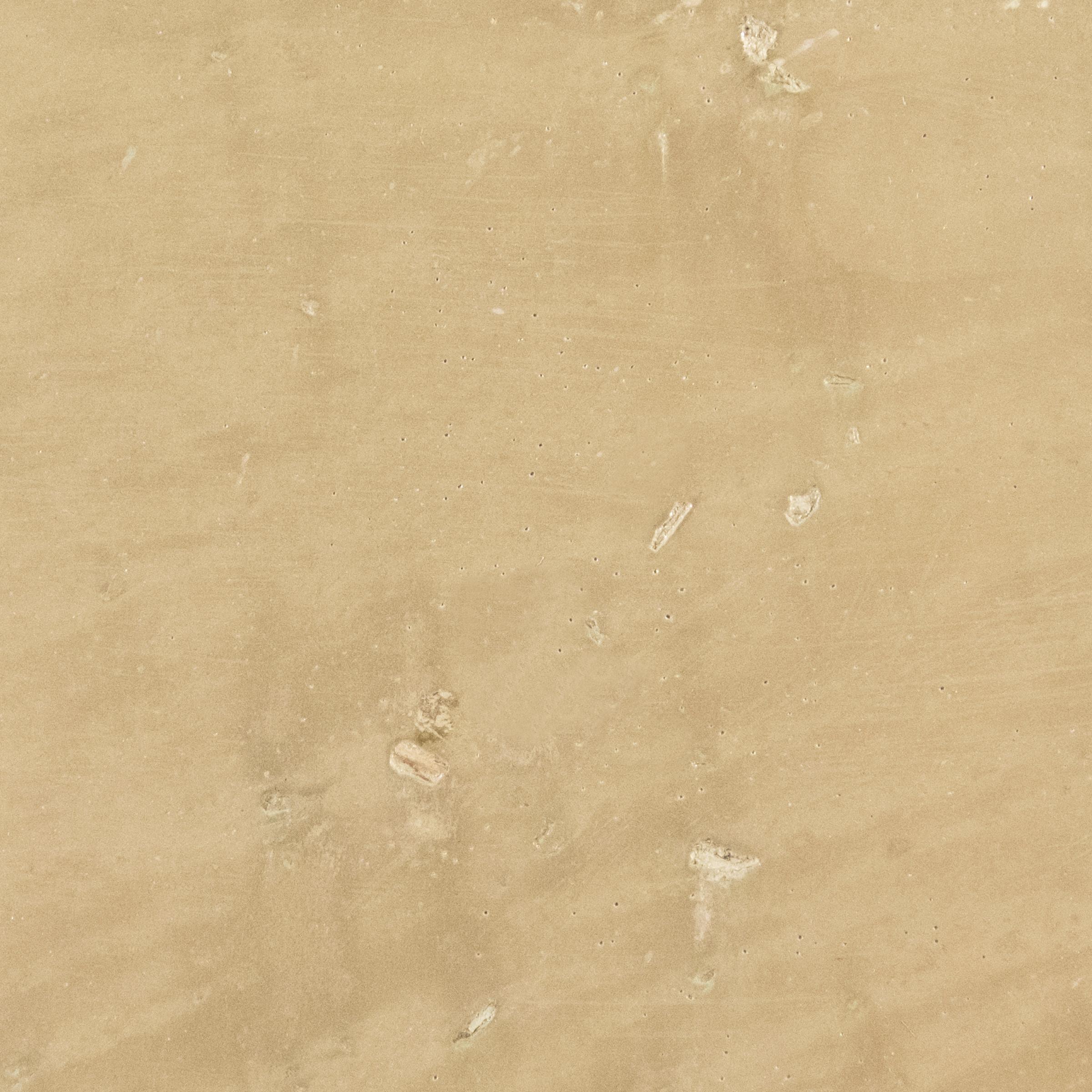 A0080.TeaLeaf.Plaster.Detail.jpg