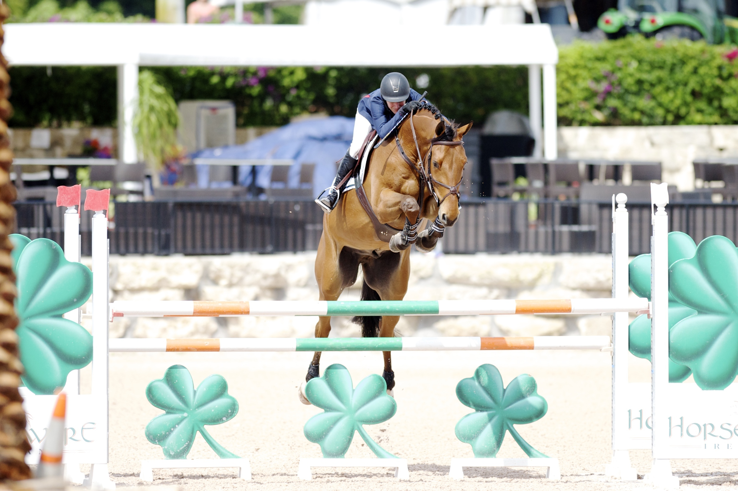 Molly Ashe and Kastriogui Z in today's $20,000 Adequan 7 YO Classic II