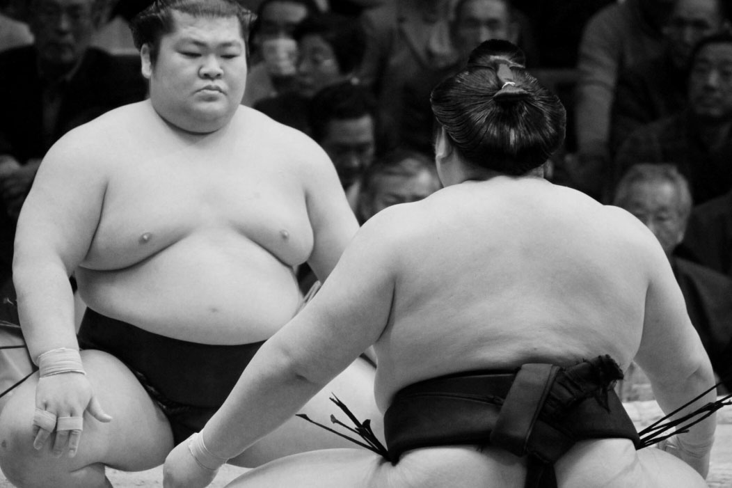 Like overweight Sumo, our agribusiness bodies wrestle their corner with long standing traditions. Image courtesy of https://thedoctorweighsin.com/why-dont-sumo-wrestlers-die-of-heart-disease/