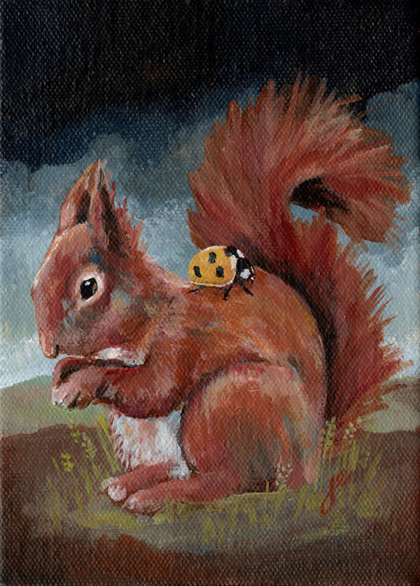 "red squirrel with ladybird , acrylic on canvas 5"" x 7"""