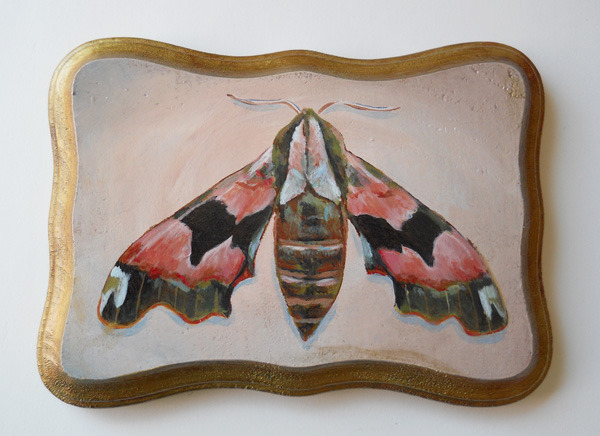 "lime hawk moth , acrylic on wood 7"" x 5"""