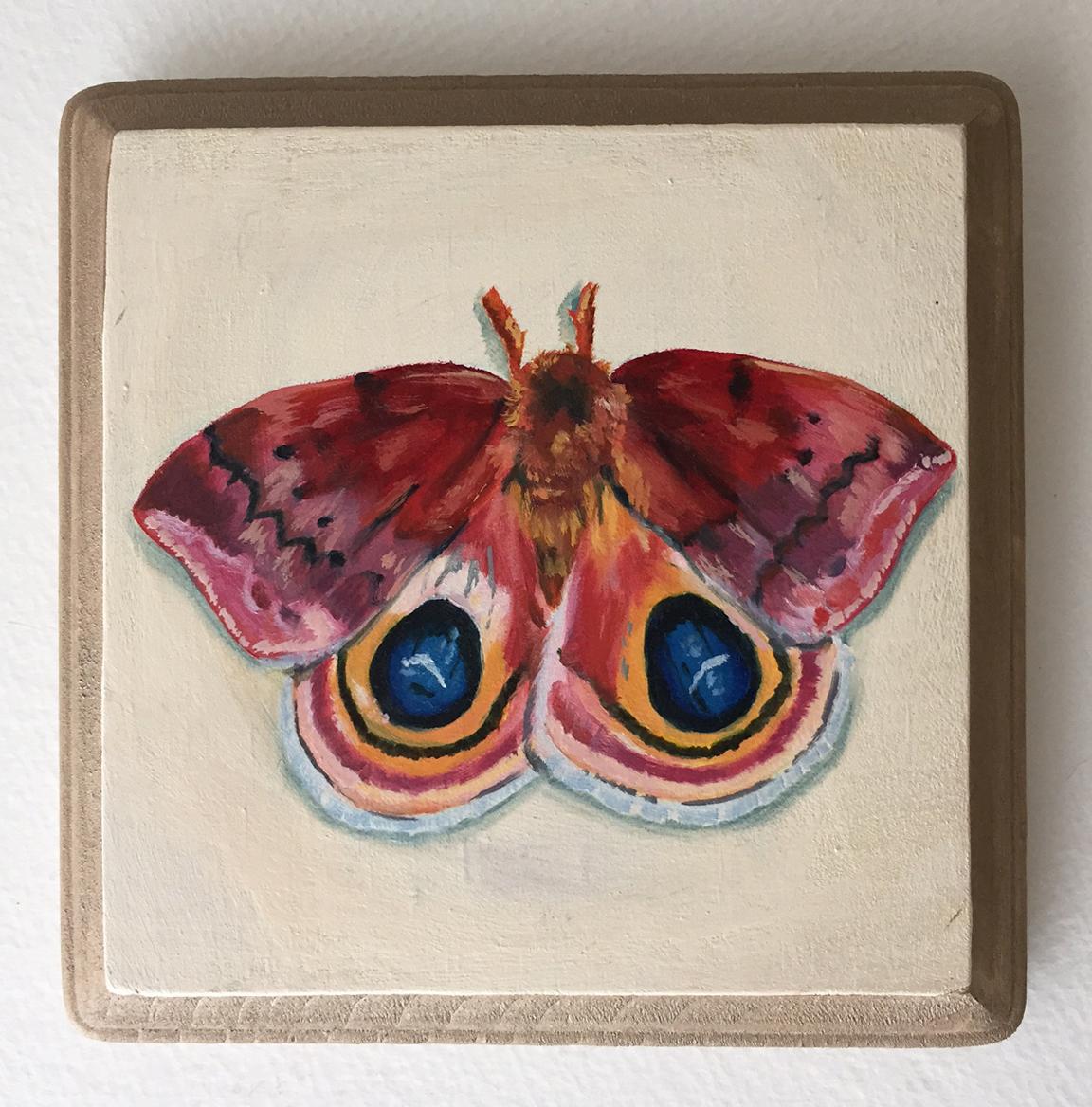 """io moth   oil on wood 5"""""""