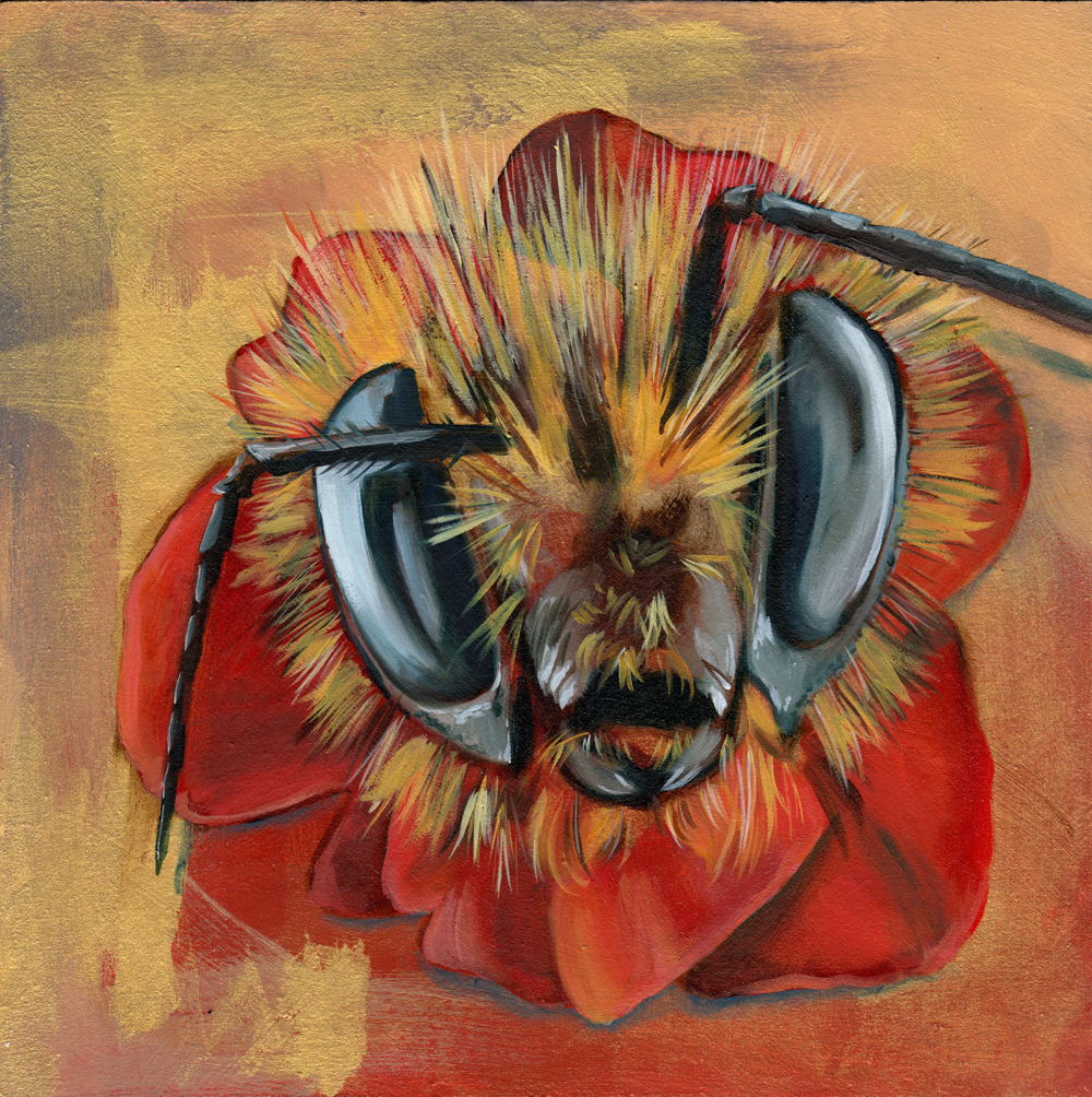 """bumblepoppy   oil and acrylic on wood 8"""""""