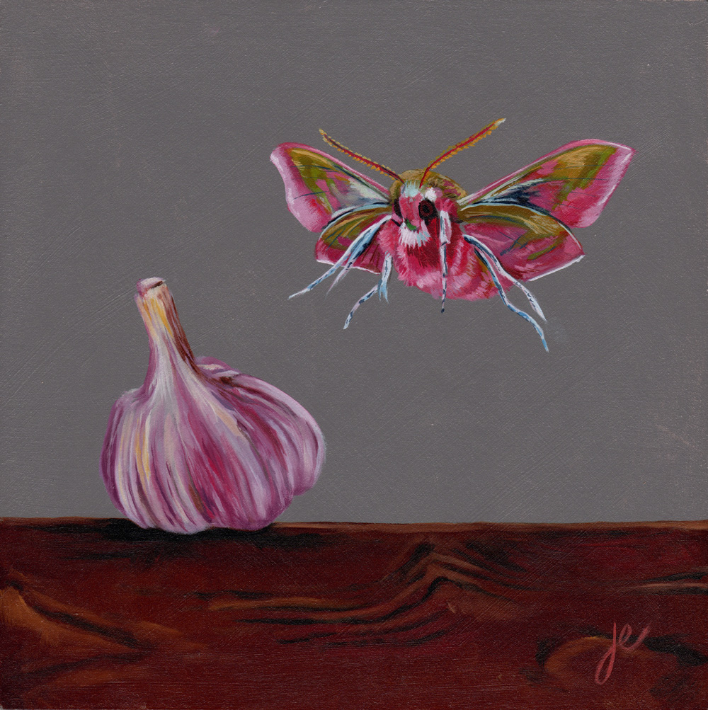 """moths in the kitchen 4   oil on wood 8"""" x 8"""""""