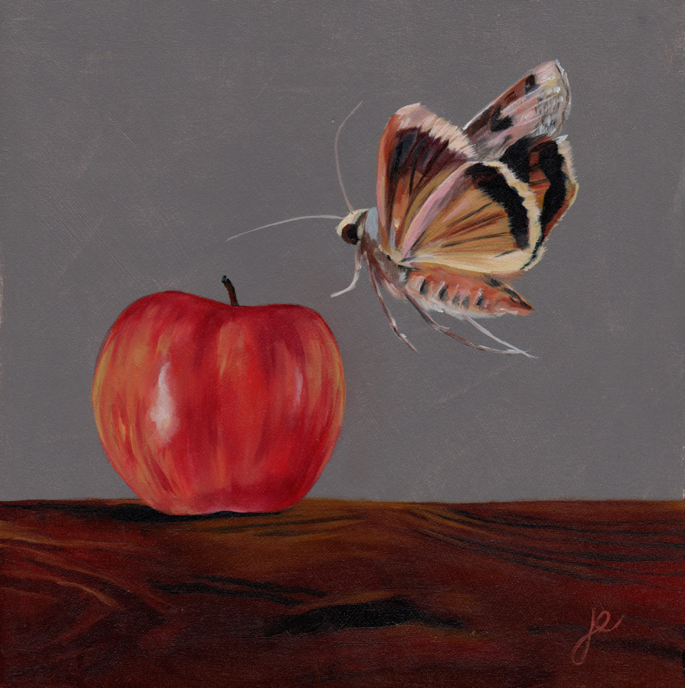 """moths in the kitchen 5   oil on wood 8"""" x 8"""""""