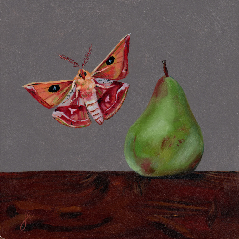 """moths in the kitchen 6   oil on wood 8"""" x 8"""""""