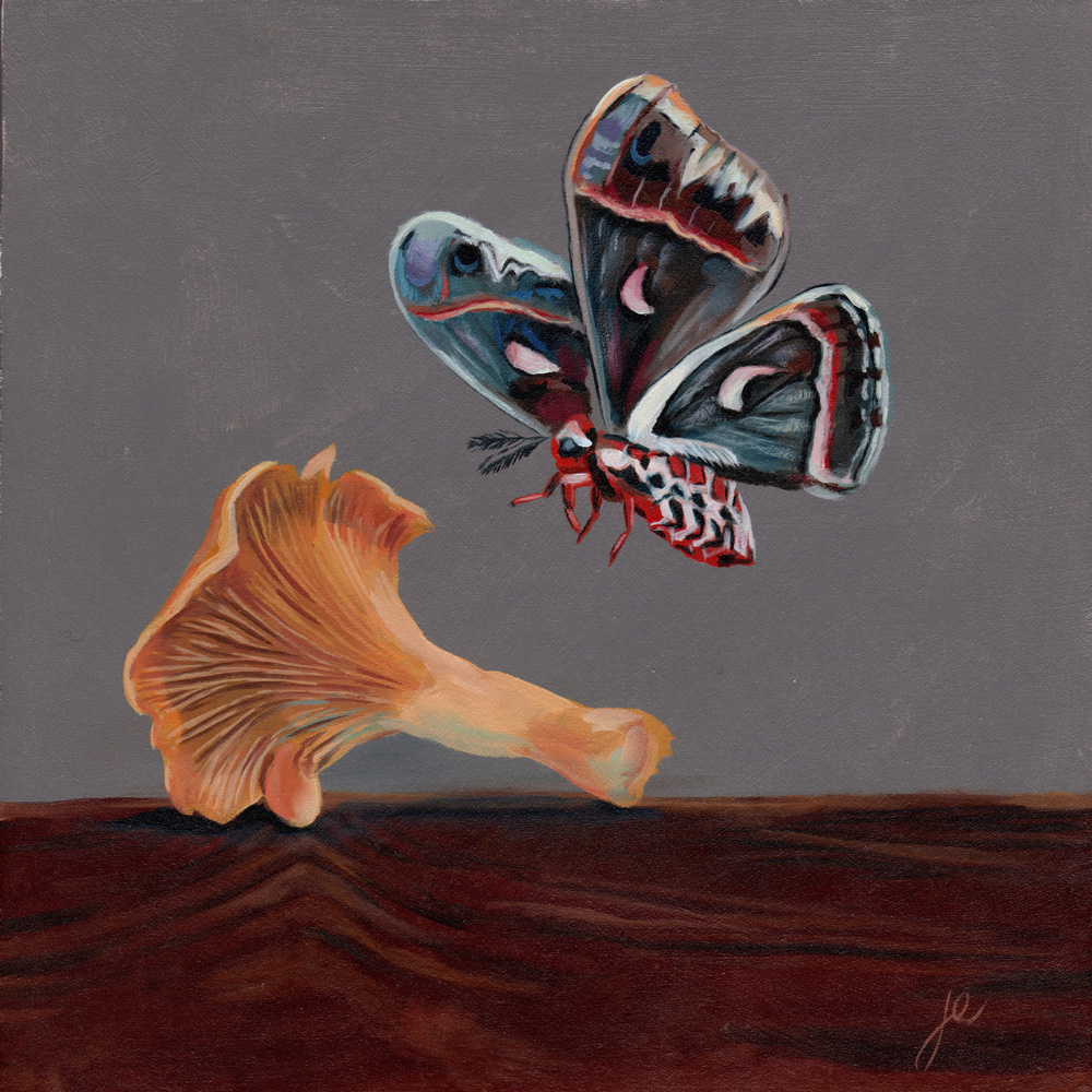 """moths in the kitchen 7   oil on wood 8"""" x 8"""""""