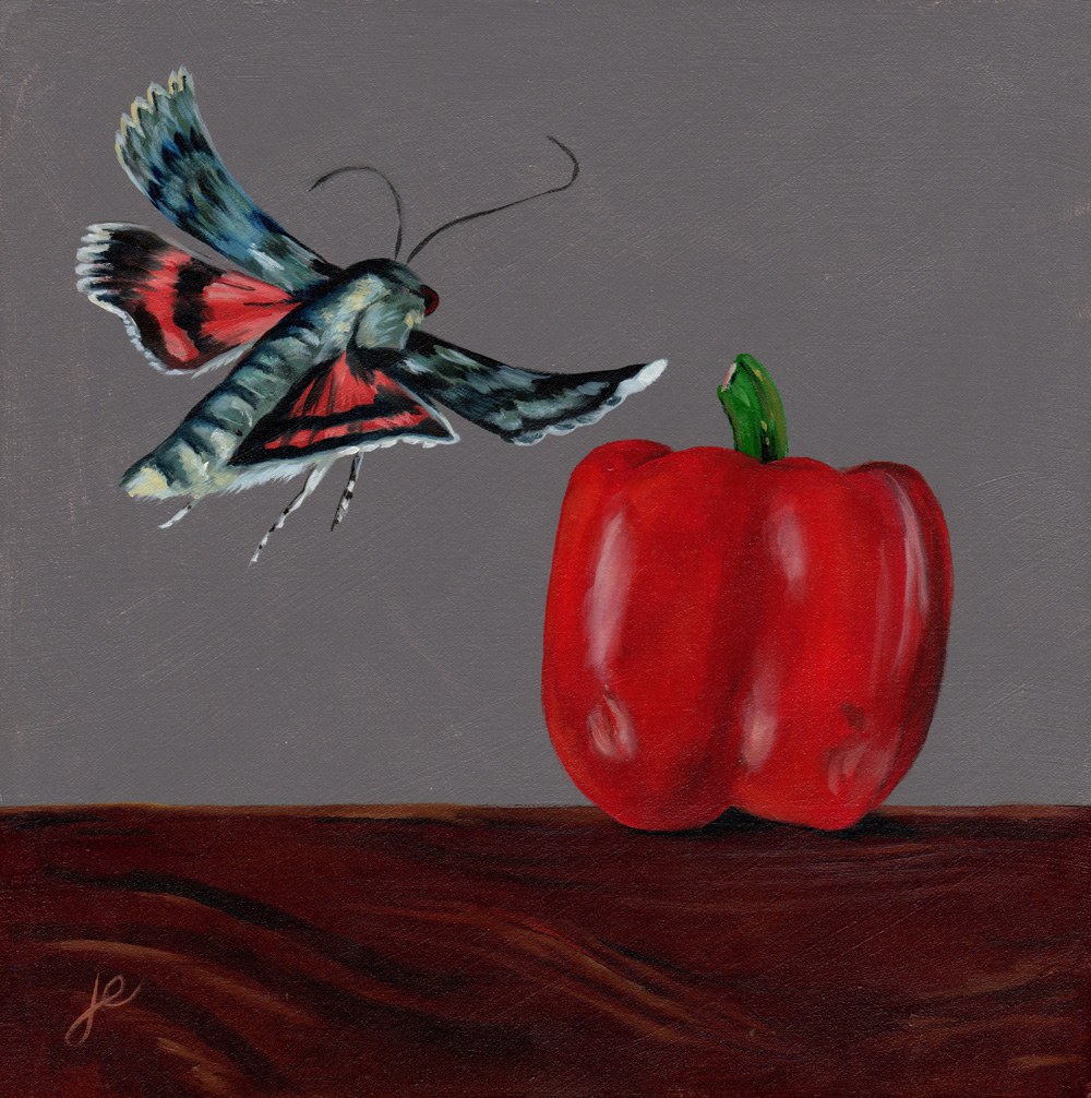 """moths in the kitchen 8   oil on wood 8"""" x 8"""""""