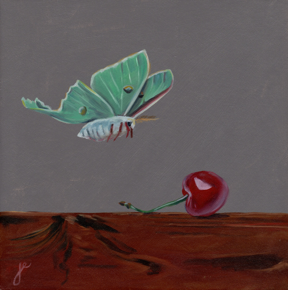"""moths in the kitchen 9   oil on wood 8"""" x 8"""""""