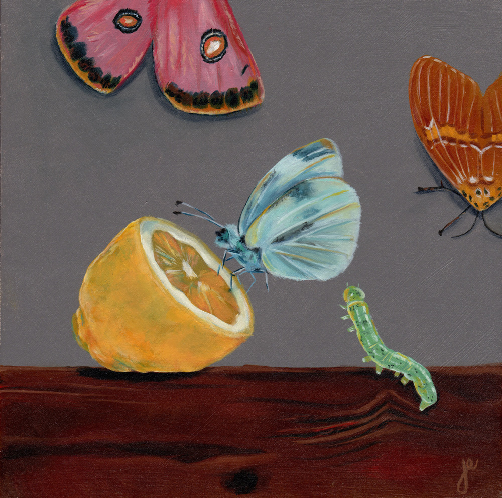 """moths in the kitchen 10   oil on wood 8"""" x 8"""""""