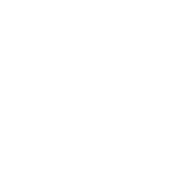 windish-agency-logo-li1.png