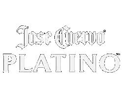 platino_logo.png