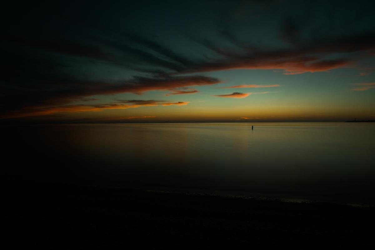 Florida-1251.JPG