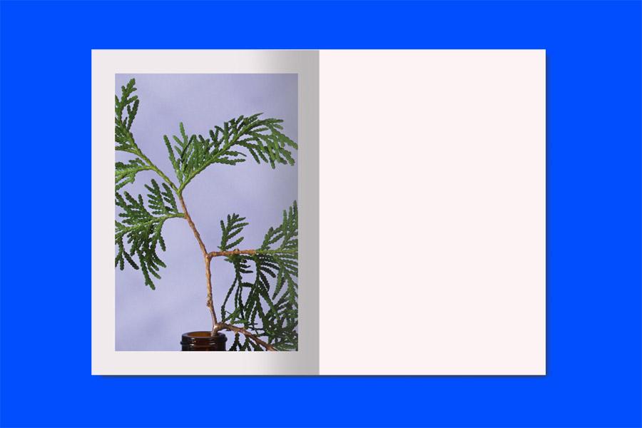 krane-spring-summer-2015-lookbook-page21-22_2.jpg