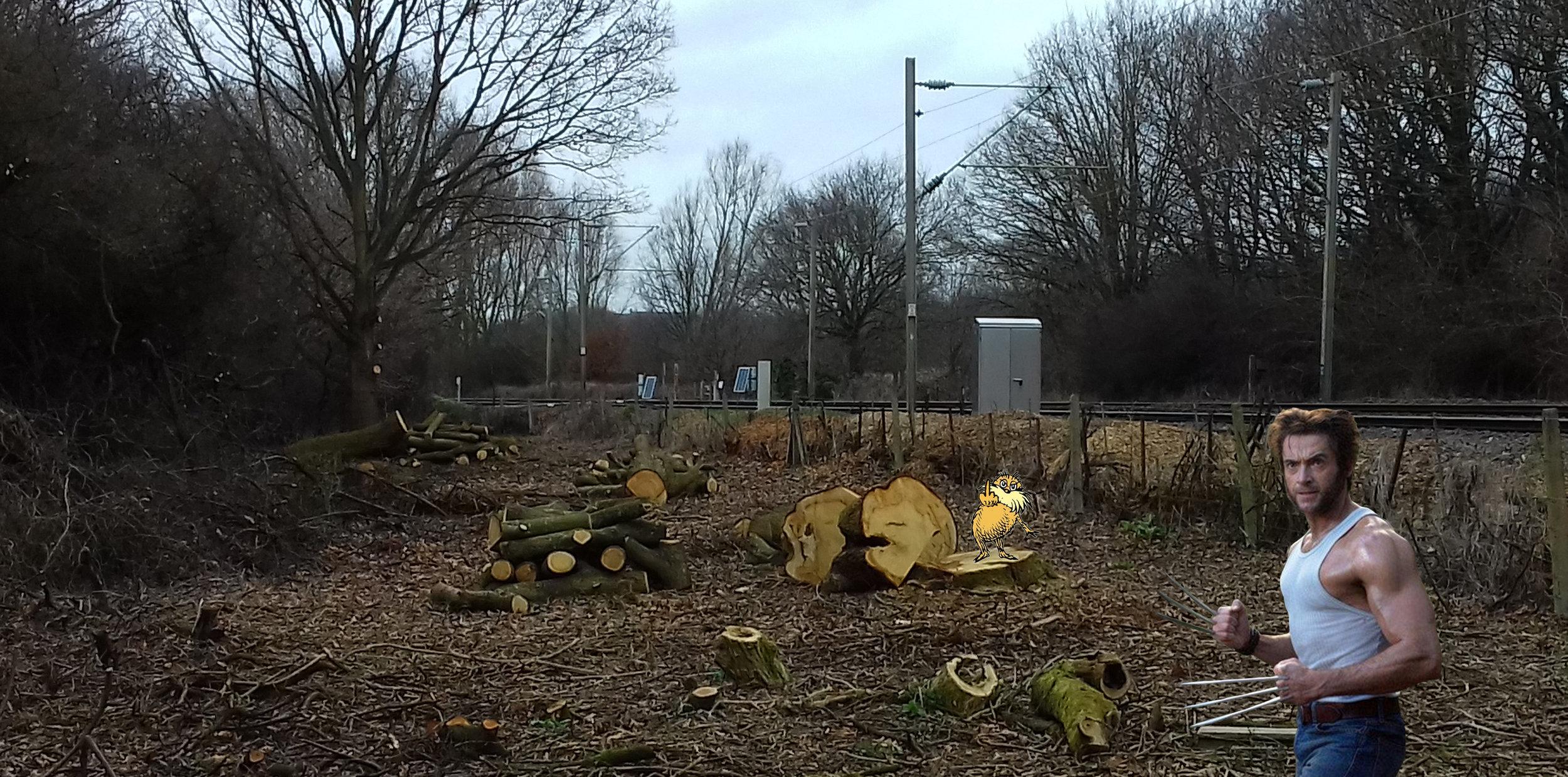 Lumberjack Wolverine