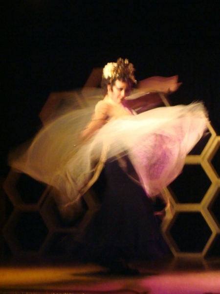Honey Bee Circus - Visual Arts Collective - Boise Idaho