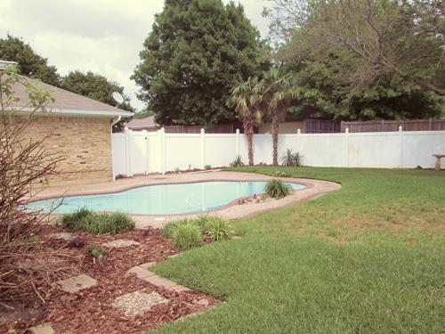 pool+palmtrees Rosemary62318.jpg