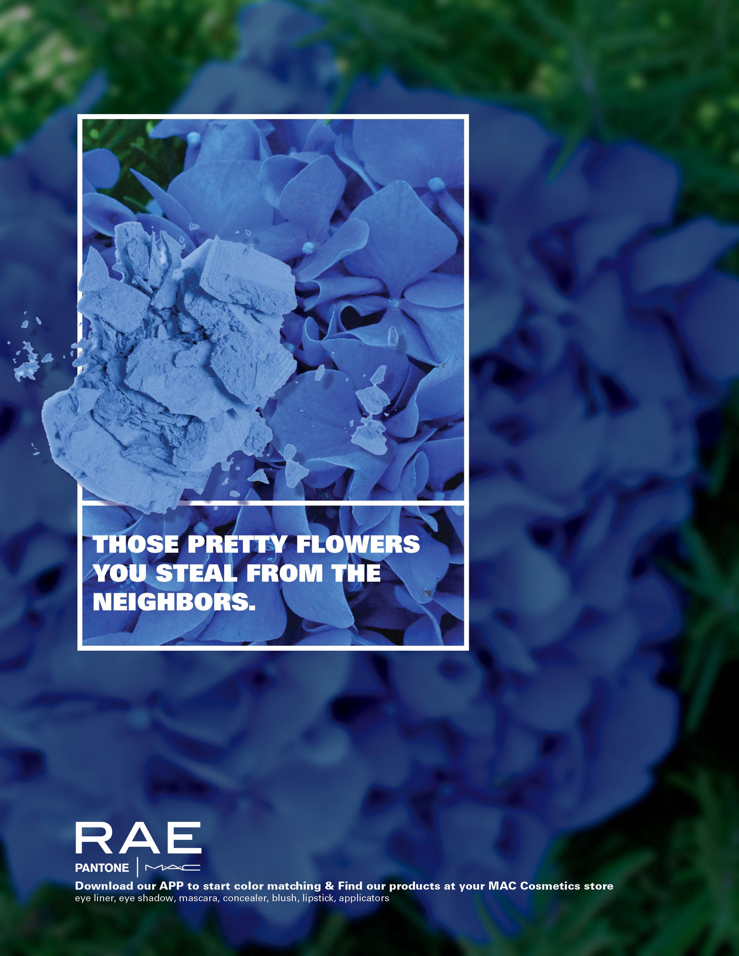 RAE_Ad_DarkBlue.jpg
