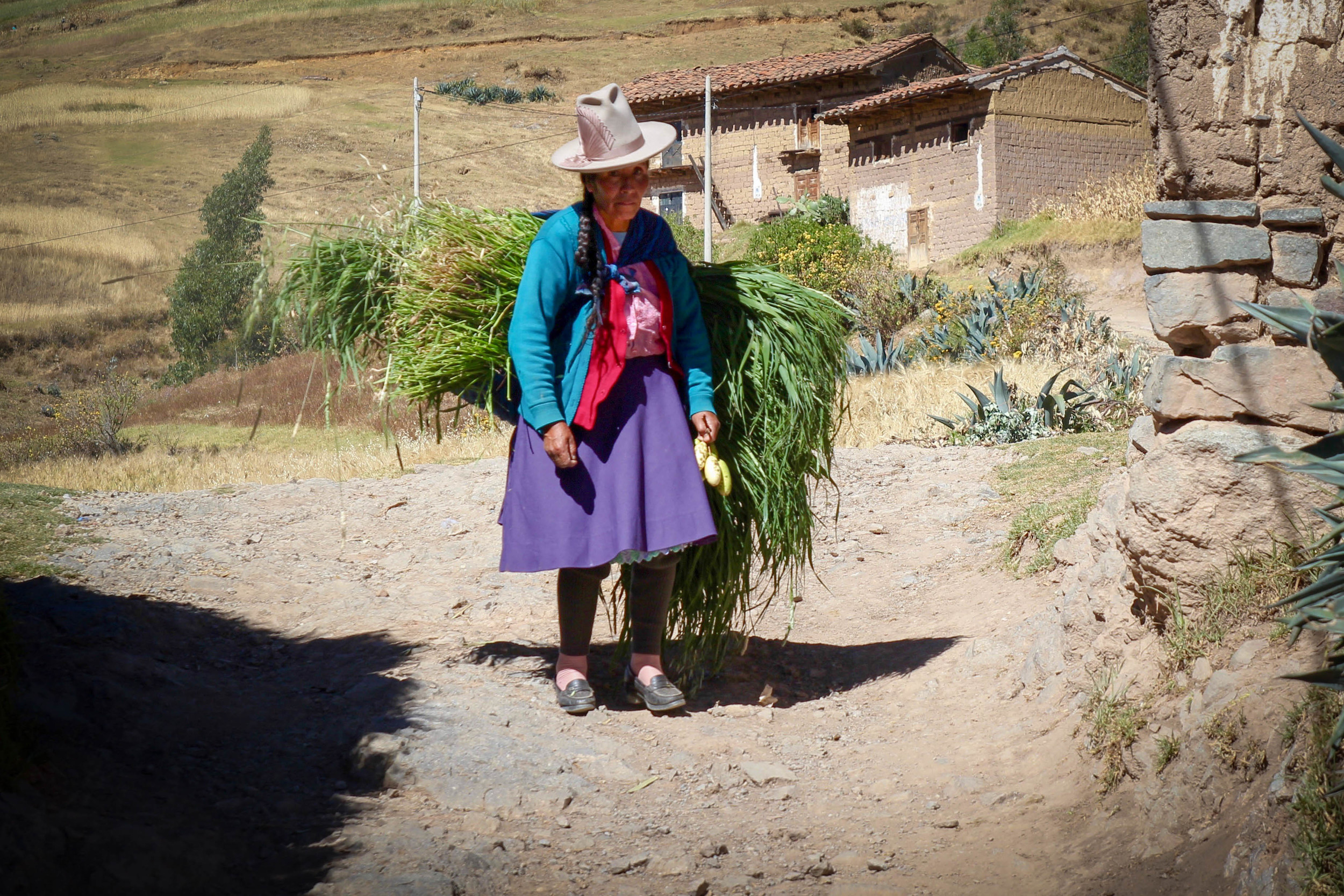 Woman walking up the Cordillera Negra with crops from her farm.