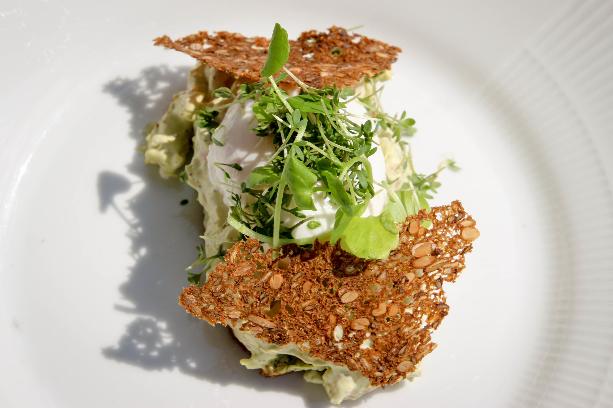 1) Poached egg with shrimp salad, cress, and chips of rye