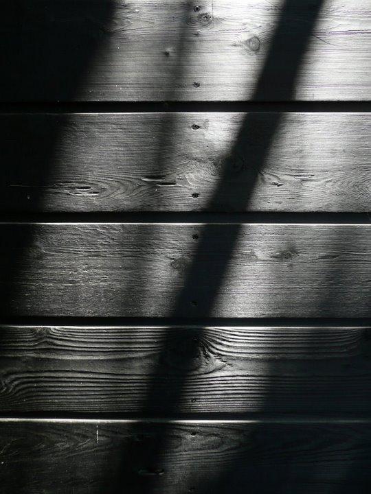 wabi-house-shou-sugi-ban-sebastian-mariscal-studio-01.jpg