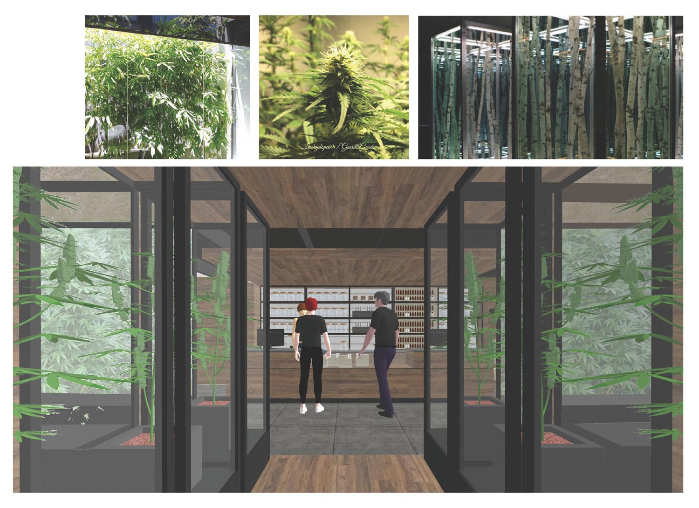 HG-dispensary-retail-hunter-leggitt-studio-5.jpg